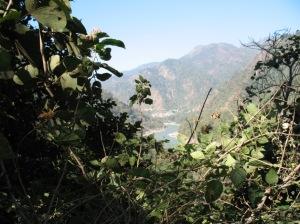 Ganga from the Mountain