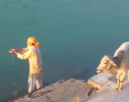 Ganga Devotion